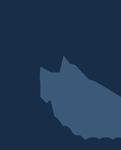 Sternhill Associates Logo